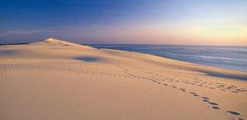 dune-du-pilat2